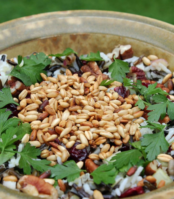 Wild Rice Salad vegetarian and gluten free