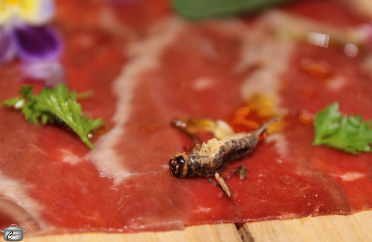 Duck carpaccio with dry-roasted crickets; the bugs added a crunchy textural element and made for lots of entertaining table talk.