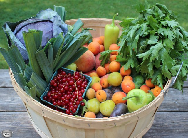This bushel basket of produce from the Ottawa Farmers' Market will inspire more than a dozen new recipes in the days ahead.