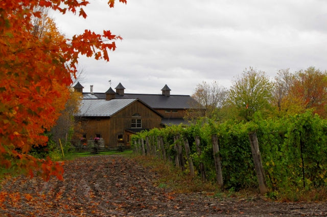 It's fun to visit The County's wineries - many are stunning properties, like The Grange.