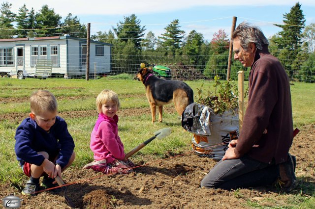 A group of 50 friends and supporters helped David get 5000 bushes in the ground in two days.