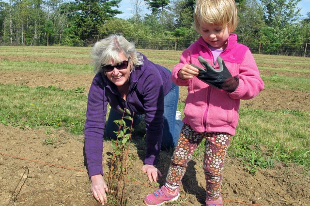 I was thrilled to help some of my Nova Scotia family members plant at South Shore Farms.