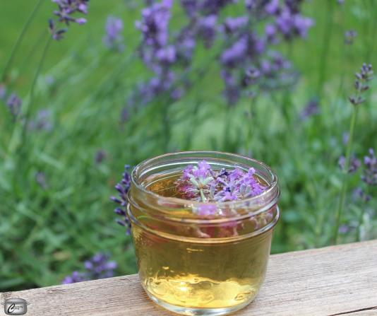 blueberry-lavender-shrub-vinegar-watermarked