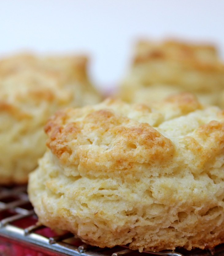 better baking powder biscuits