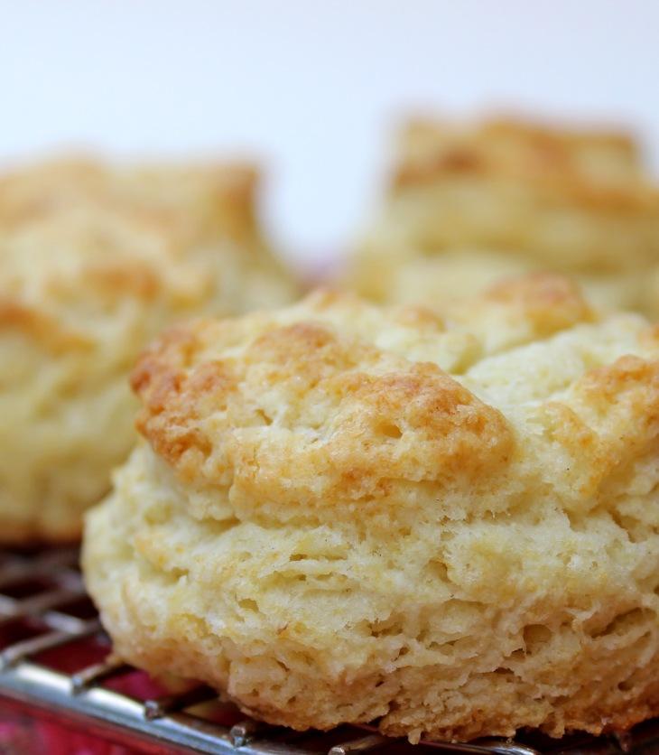 better baking powder biscuits
