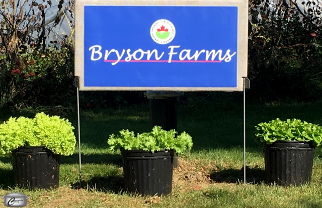 Bryson Farms
